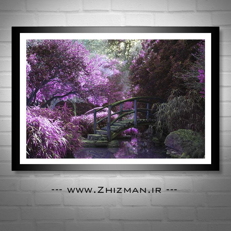 عکس درخت با شکوفه های بنفش