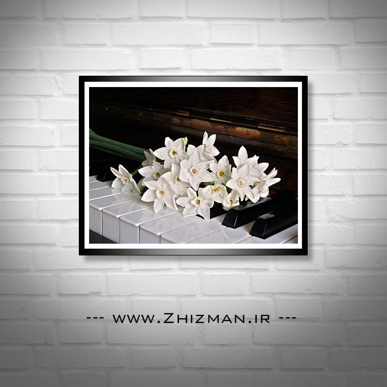 عکس گل نرگس روی پیانو