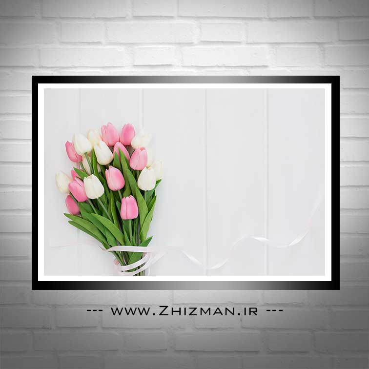 عکس دسته گل لاله سفید و صورتی